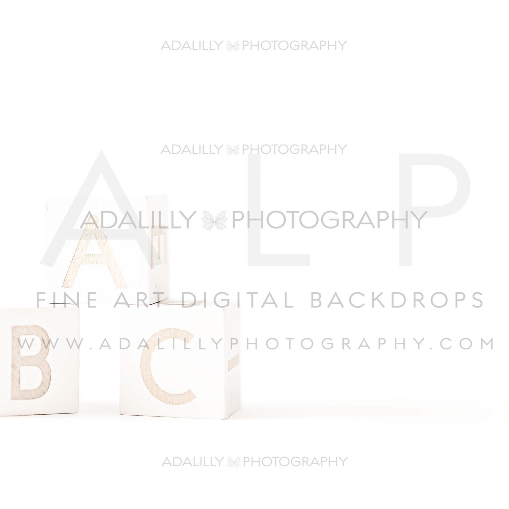ABC BLOCKS - $15.00
